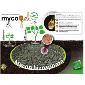 agroshop kimitec mycogel fruit tree